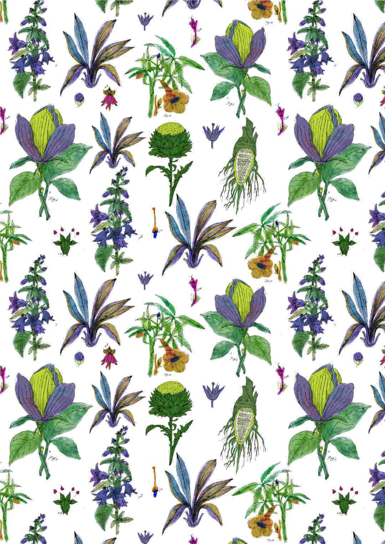 植物花卉果实矢量图数码印花源文件-POP花型网