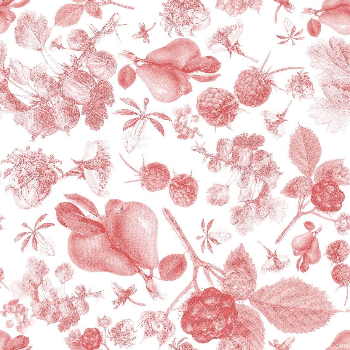 粉色植物果实拼接矢量图-POP花型网