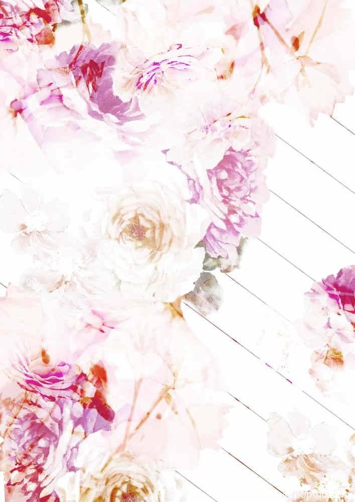 牡丹花矢量图数码印花源文件花型-POP花型网