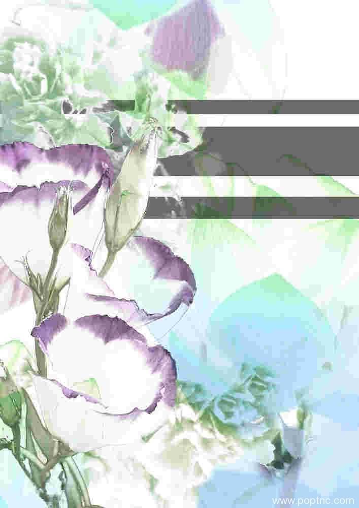 植物数码印花矢量图-POP花型网