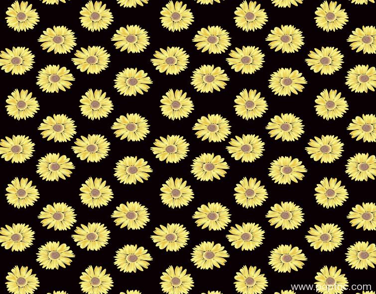 新款植物花卉印花矢量图菊花花型金昌格式分色稿A2752-POP花型网