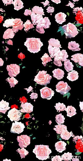 玫瑰花印花矢量图纺织面料印花花型金昌分色稿源文件-POP花型网