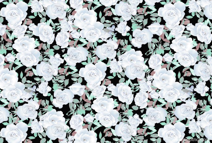纺织面料印花图植物花卉矢量图牡丹花型金昌格式分色稿A2767-2-POP花型网