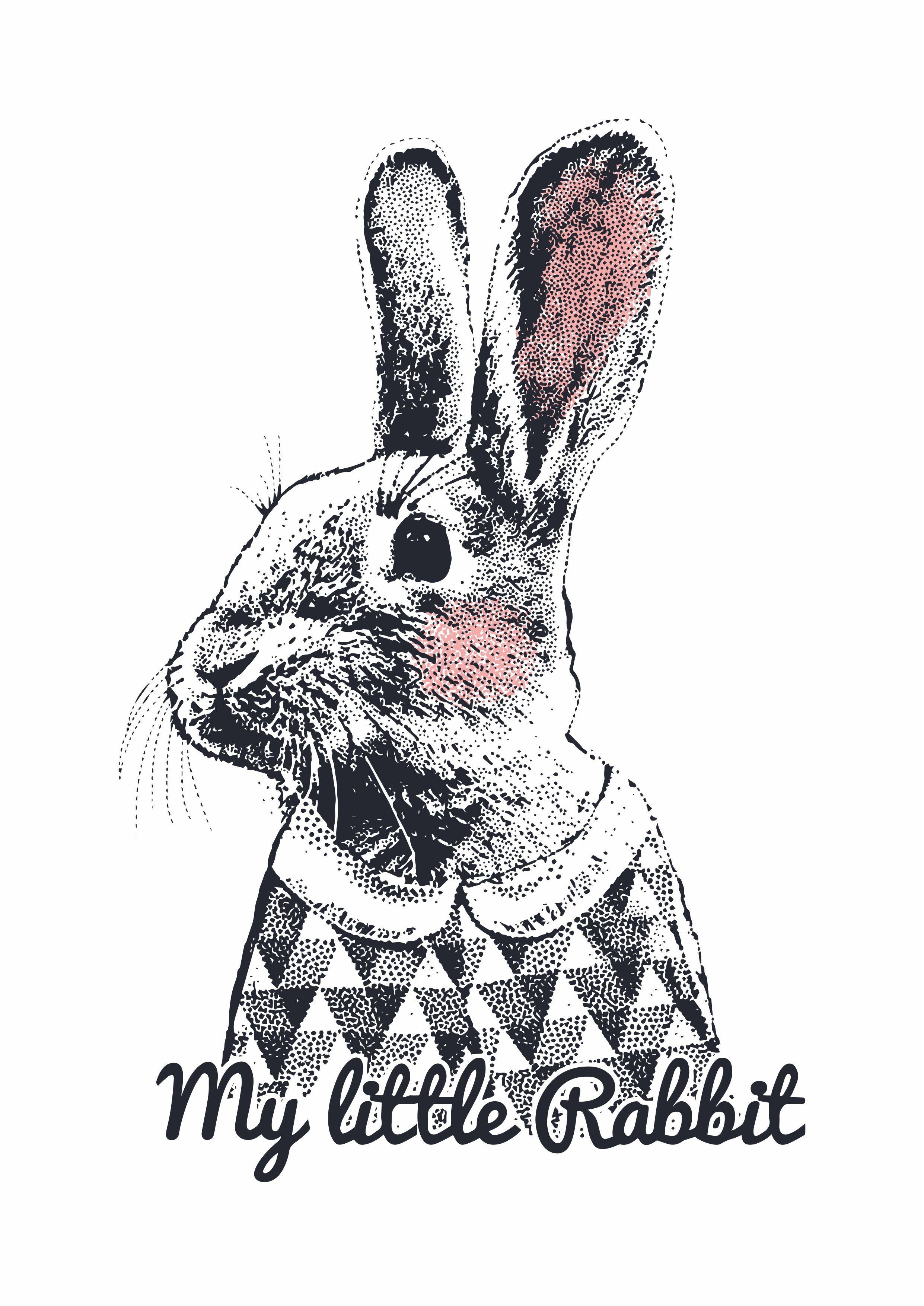 动物兔子字母拼接印花图案服装T恤烫图印花花型素材-POP花型网