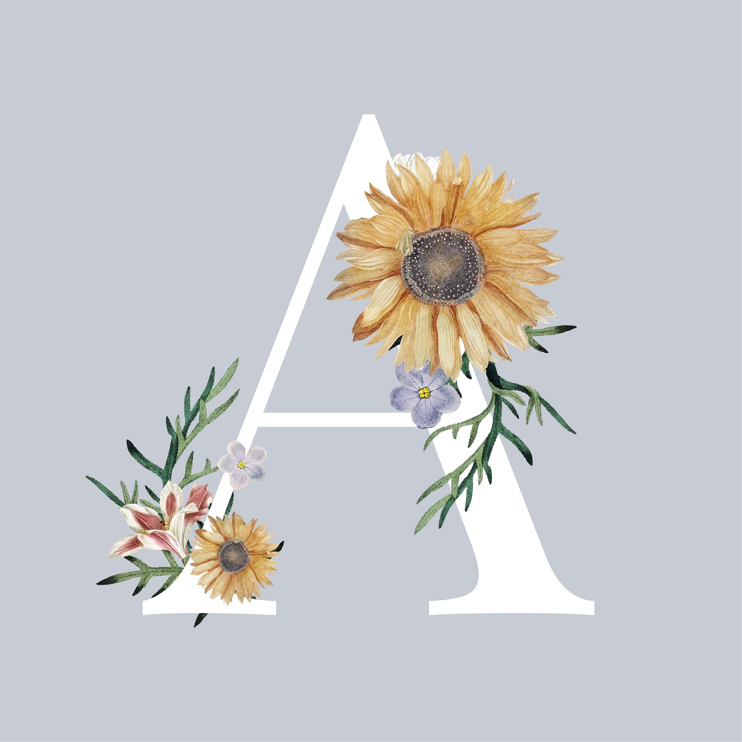 植物花朵菊花字母A拼接矢量图服装T恤裁片烫图印花花型素材-POP花型网