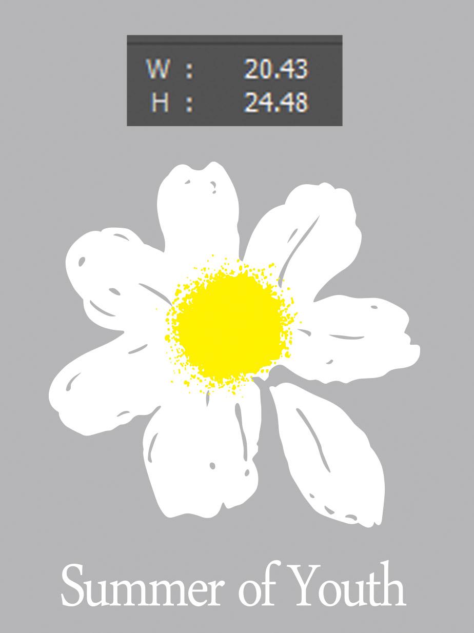白色菊花矢量图服装裁片T恤烫图印花花型素材-POP花型网