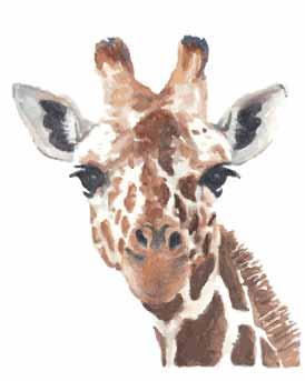 动物长颈鹿印花矢量图服装裁片T恤烫图印花花型素材-POP花型网