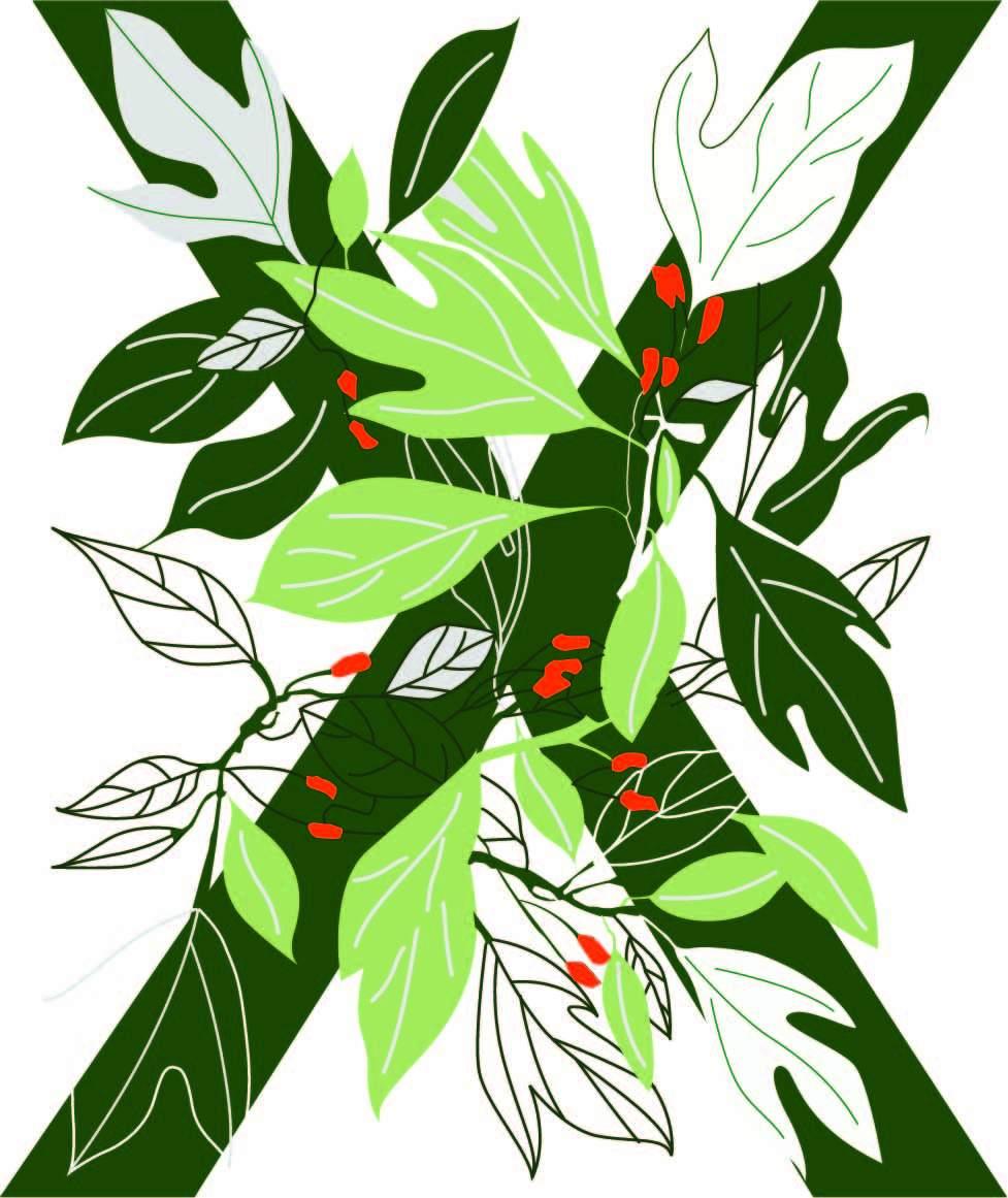 植物花纹字母X印花矢量图服装裁片T恤烫图印花花型素材-POP花型网