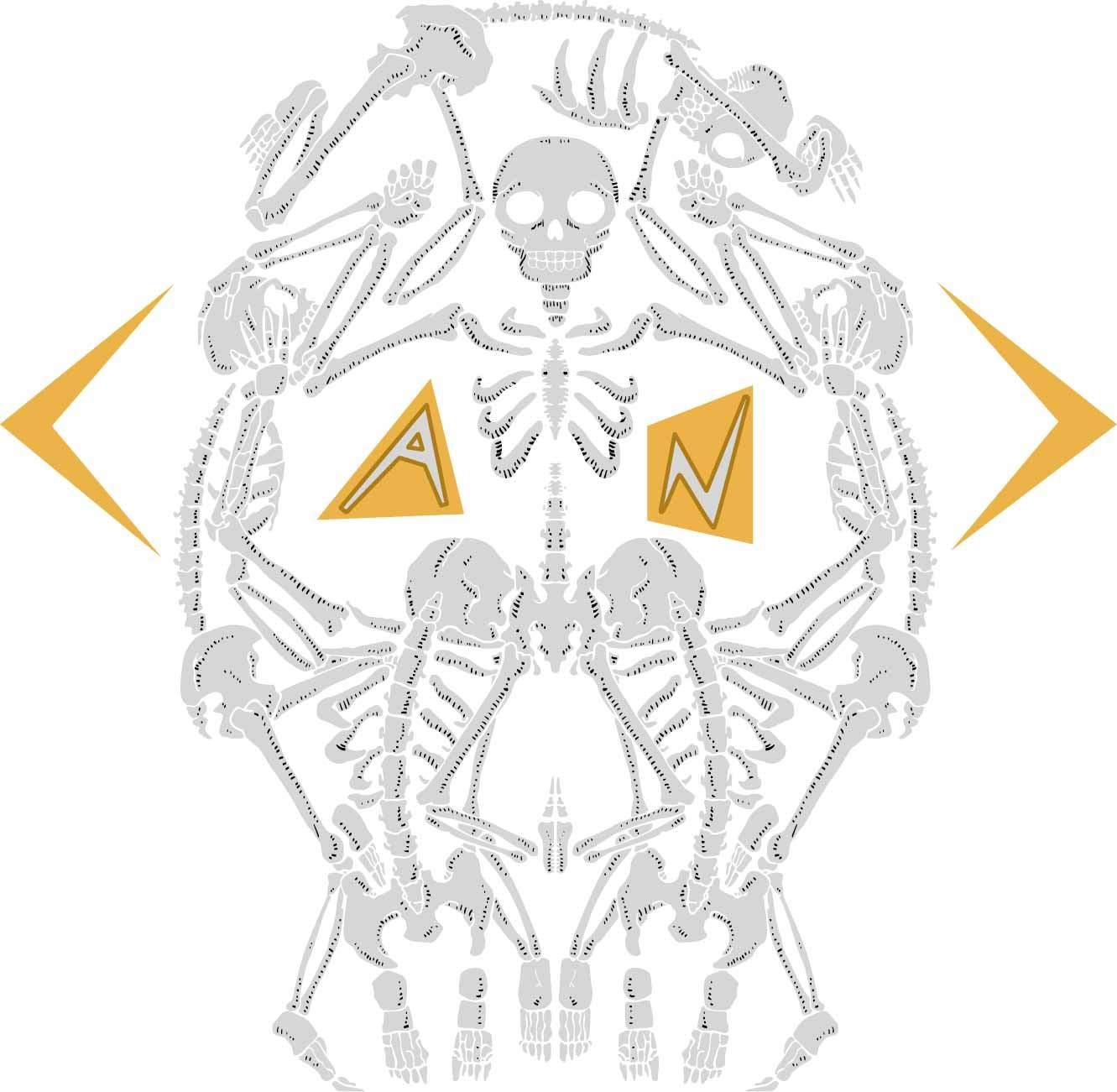 几何图案骷髅头拼接印花矢量图服装裁片T恤烫图印花花型素材-POP花型网