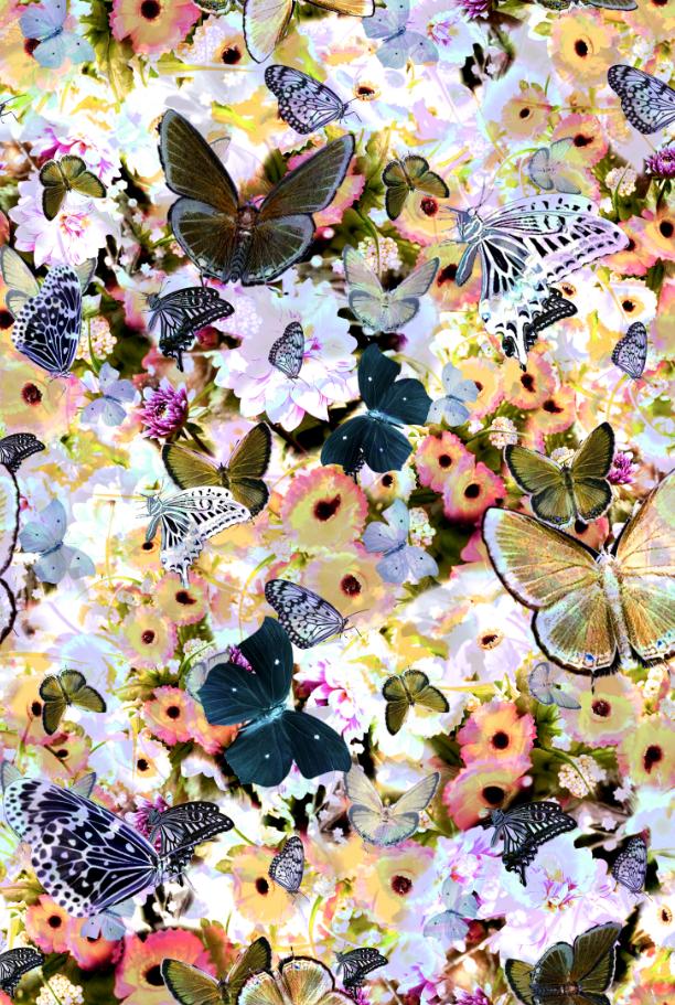植物花卉菊花蝴蝶印花图案服装纺织面料数码印花素材-POP花型网