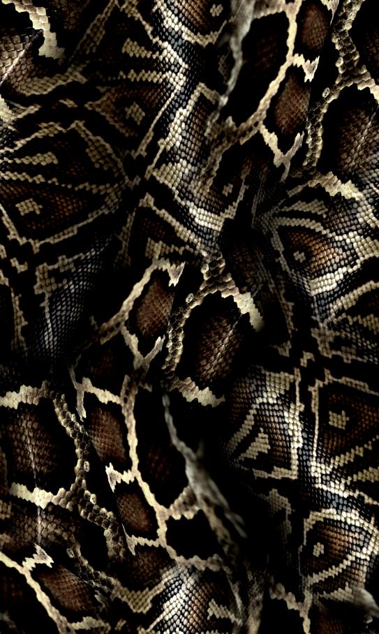几何蟒纹印花图案服装纺织面料数码印花花型素材-POP花型网