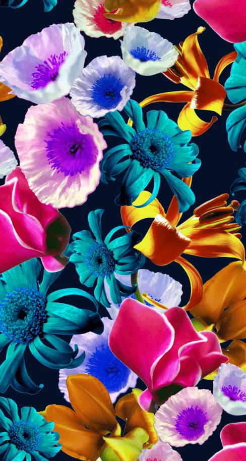植物花朵邹菊印花图案服装纺织面料数码印花素材-POP花型网