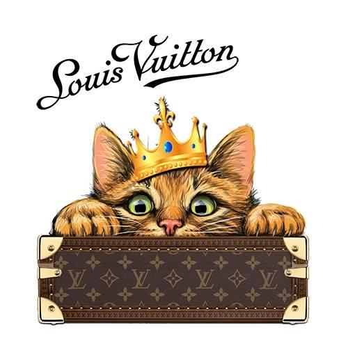动物猫咪黄光字母潮牌LV印花矢量图服装裁片T恤烫图印花花型素材-POP花型网