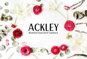 Ackley英文字体-POP花型网