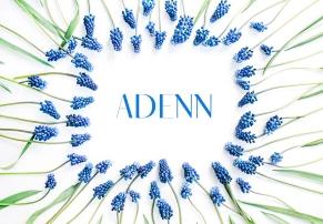 Adenn Sans Serif Typeface英文字体-POP花型网
