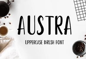 Austra Brush Font英文字体-POP花型网