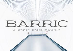Barric A Serif Font Family英文字体-POP花型网