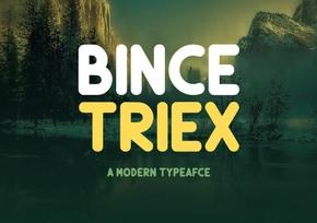 Bince Triex英文字体-POP花型网