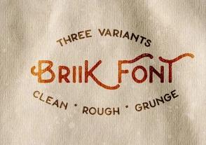 Briik - Hipster Fonts英文字体-POP花型网