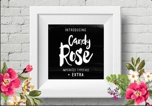 Candy Rose英文字体-POP花型网