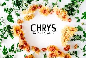 Chrys Sans Serif Typeface英文字体-POP花型网