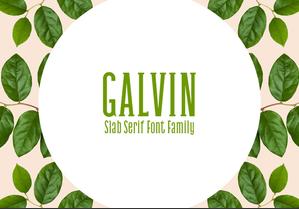 Galvin Slab Serif英文字体-POP花型网