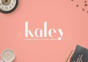 Kaley Elegant Typeface英文字体-POP花型网