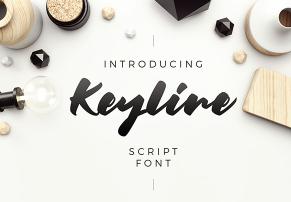 Keyline Script Font英文字体-POP花型网