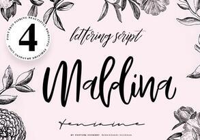 Maldina Feminime英文字体-POP花型网