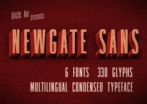 Newgate Sans英文字体-POP花型网