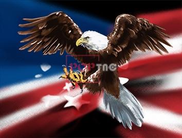 Palm Angels美式元素白头鹰&国旗印花图案服装裁片T恤卫衣烫图印花花型素材-POP花型网