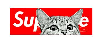 猫咪潮牌字母Supreme印花图案服装裁片T恤卫衣烫图印花花型素材-POP花型网