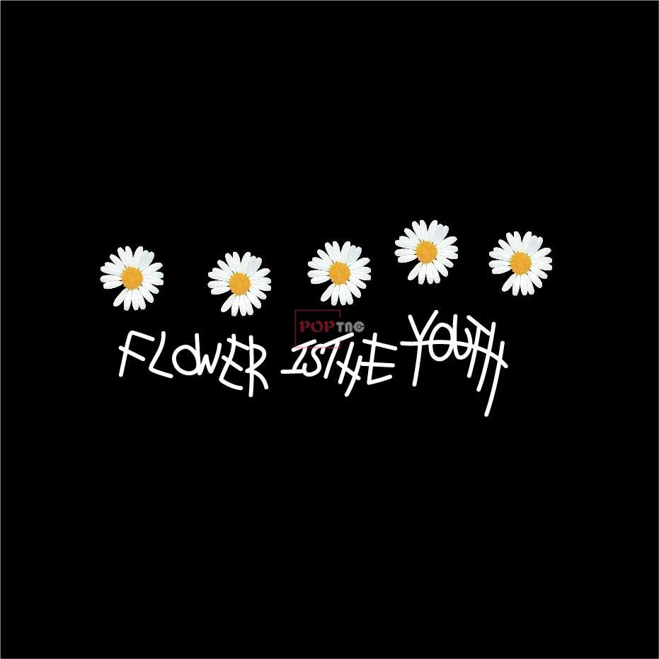 字母图案小雏菊印花服装裁片T恤卫衣烫图印花花型素材-POP花型网