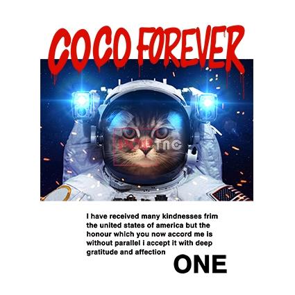 太空人猫咪字母印花图案服装裁片T恤卫衣烫图印花花型素材-POP花型网