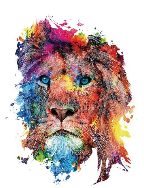 多彩动物狮子印花图案服装裁片T恤卫衣烫图印花花型素材-POP花型网