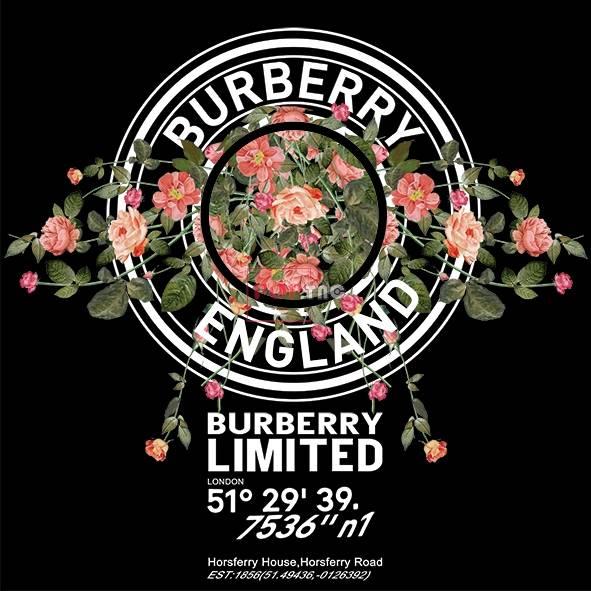 潮牌BURBERRY植物玫瑰花印花图案服装裁片T恤卫衣烫图印花花型素材-POP花型网