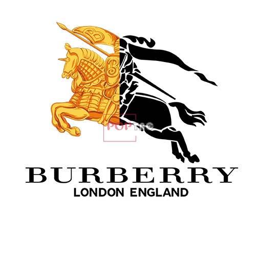 潮牌BURBERRY印花图案服装裁片T恤卫衣烫图印花花型素材-POP花型网